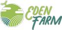Giải pháp trồng dưa lưới trong nhà kính nông nghiệp