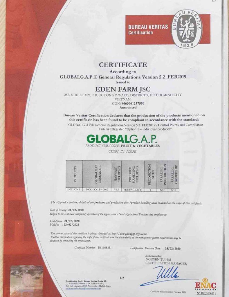 Chứng nhận Farm nông nghiệp sạch Global G.A.P
